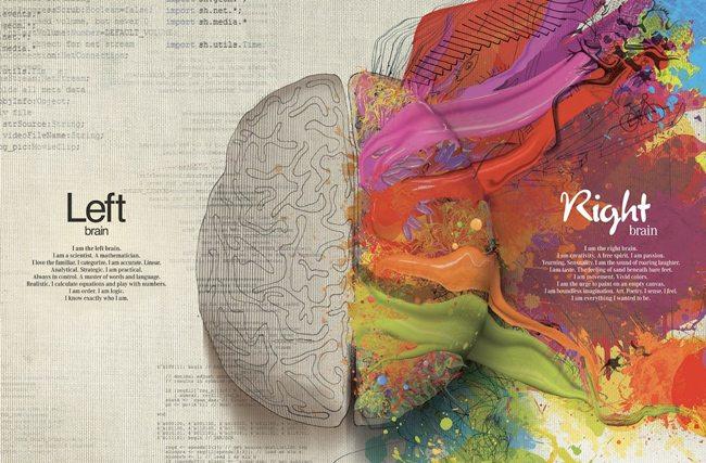 mercedes_left_right_brain