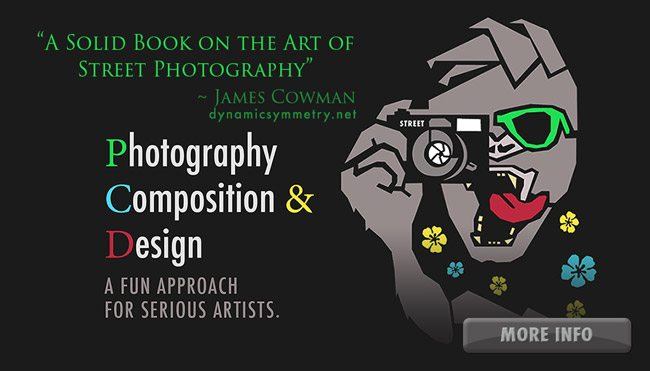 Photography-composition-and-design-quote-more-info-regular