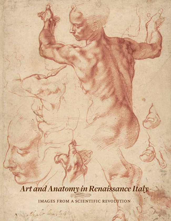 Art_and_Anatomy_in_Renaissance_Italy_Images_from_a_Scientific_Revolution-1