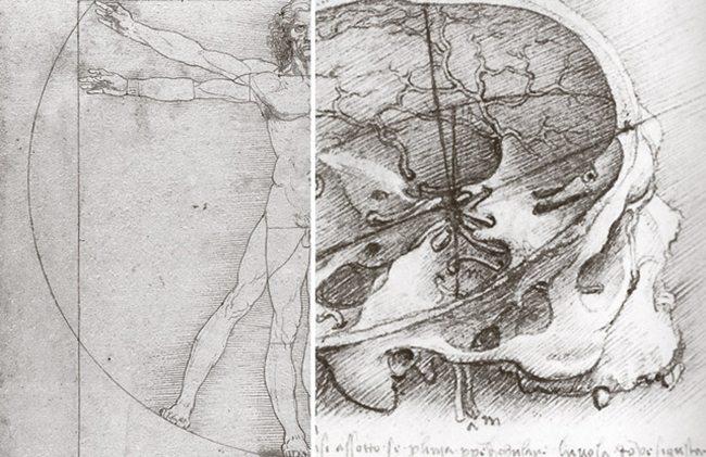 Drawings-by-Da-Vinci