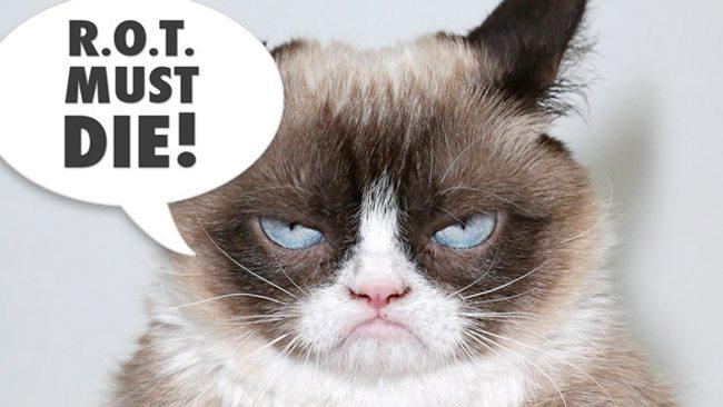 Grumpy-Cat-ROT-must-die