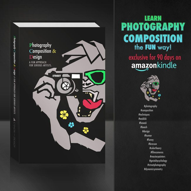 amazon-photography-composition-and-design-3d-book-cover-650px