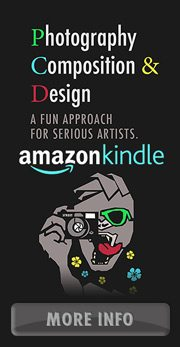 photography-composition-and-design-banner-amazon-180px