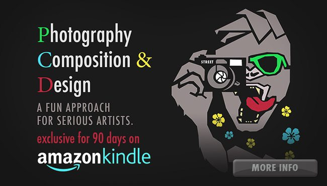 photography-composition-and-design-book-amazon90days-more-info