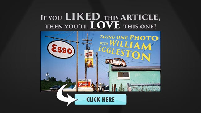 If-you-liked-then-youll-love-taking-one-photo-with-william-eggleston-colorist