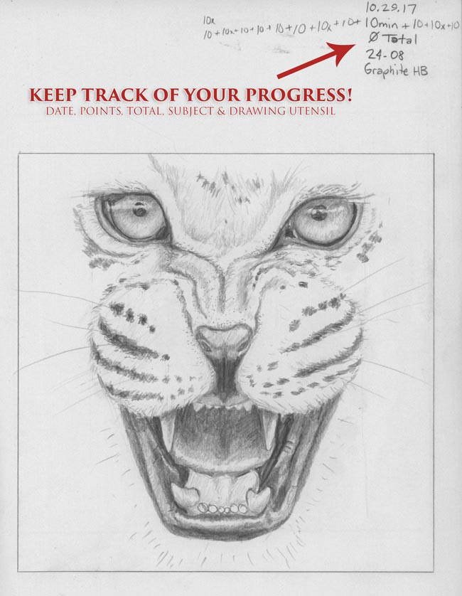 canon-of-design-drawing-game-with-dynamic-symmetry-composition-and-gestalt-psychology-drawing-samples-leopard