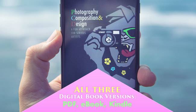 canon-of-design-photography-composition-and-design-book-shoppe