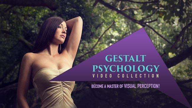 canon-of-design-techniques-for-artistic-photographers-gestalt-psychology-videos-2