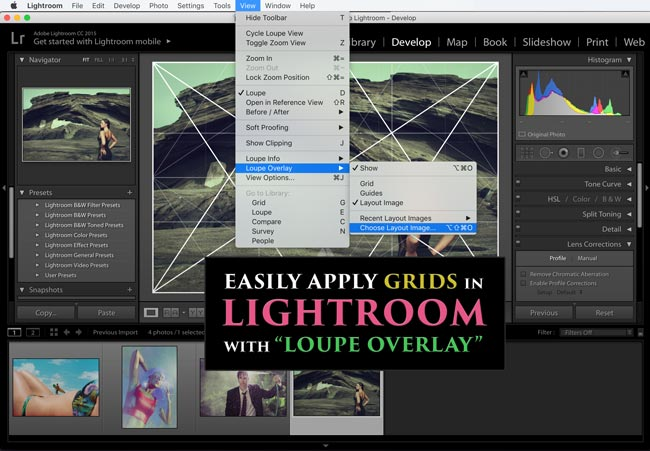 dynamic-symmetry-grids-for-lightroom-loupe-overlay-keyboard-shortcut